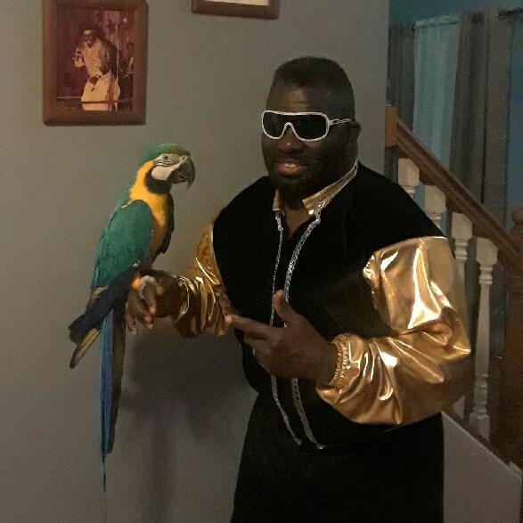 Avatar of Koko B Ware The Birdman
